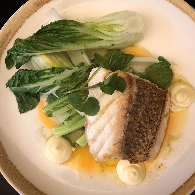 Pan fried fresh local snapper with wasabi mayo and Asian greens, from our new lunch menu.