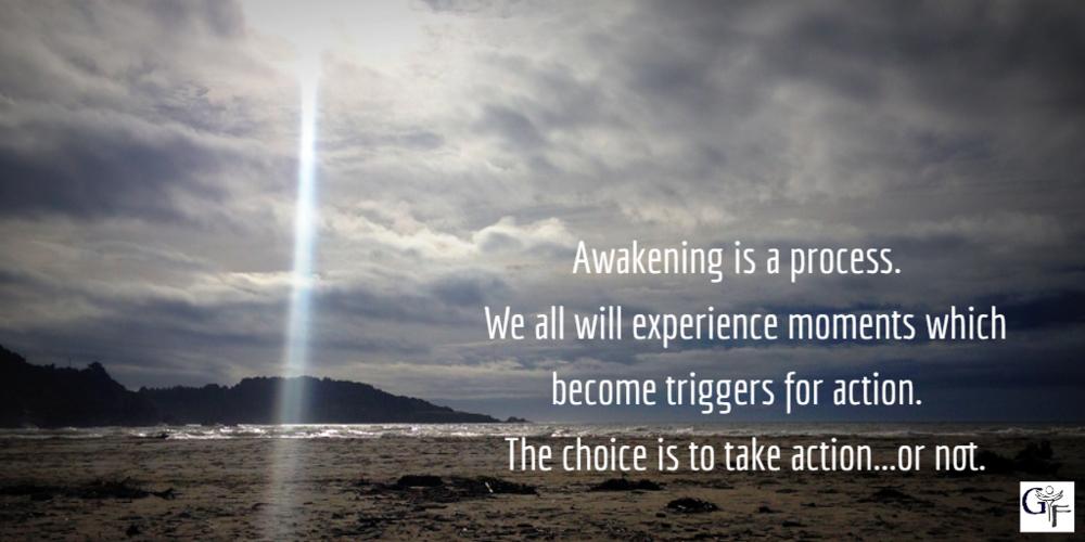 awakening process.png