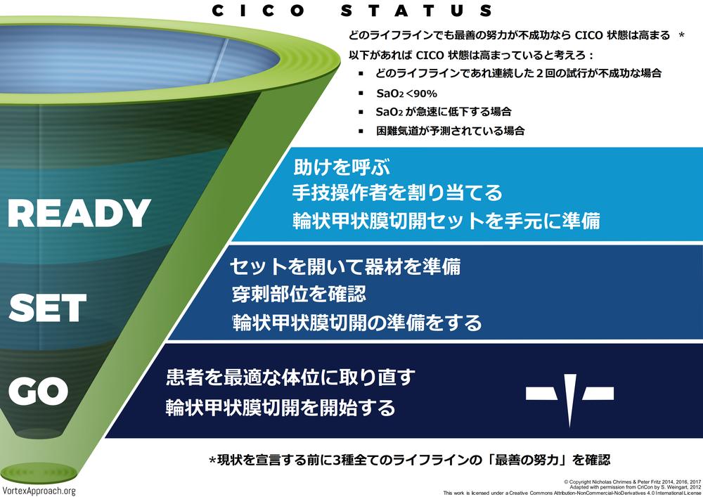 CICO Status Tool - Japanese Version