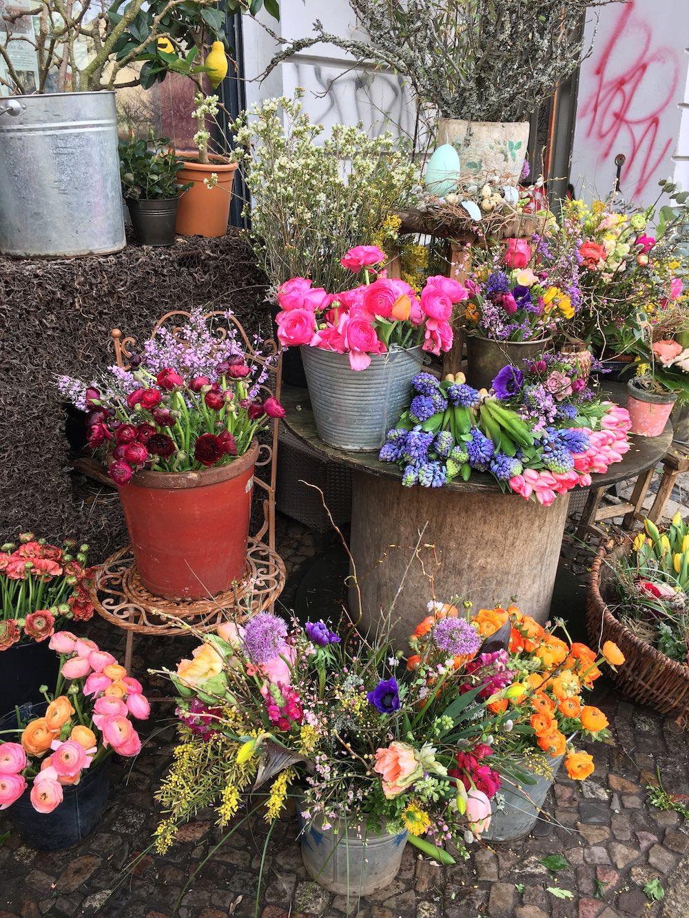 hoiberlin-geburtstagsblumen