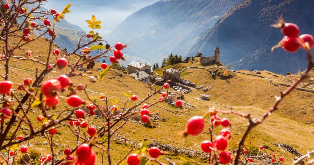 hoiberlin-goodtravel-Svizzera_ValPoschiavo_SanRomerio_Autunno17-9951_gr.jpg
