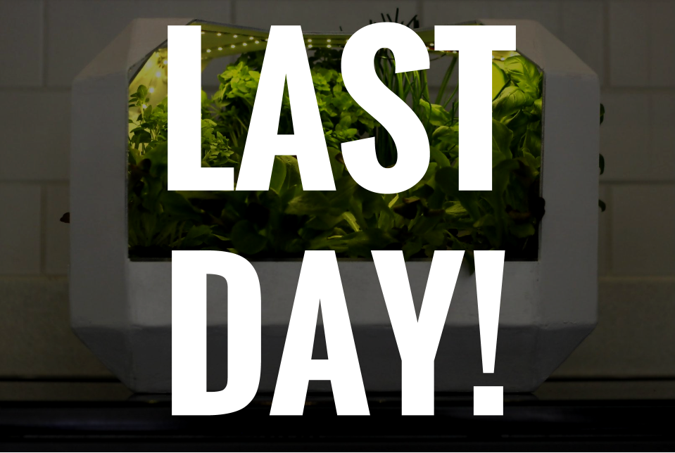 Last Day!.png