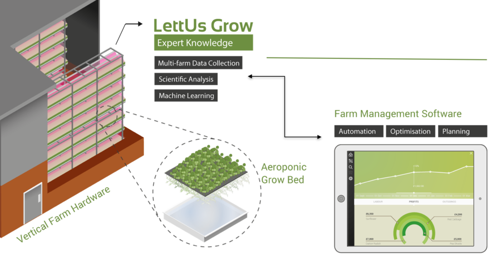 Lettus Grow - aeroponic product service infographic.png
