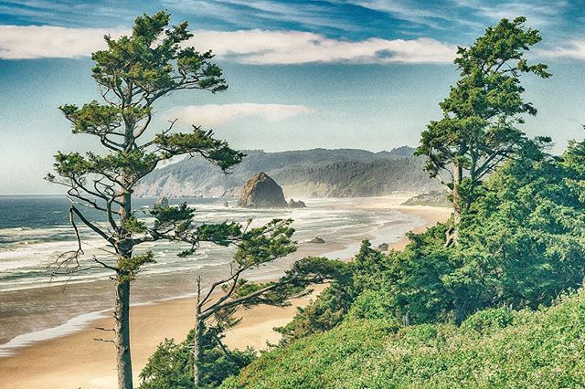 #cannonbeach  I may have stepped in poison oak to shoot this... we will see!