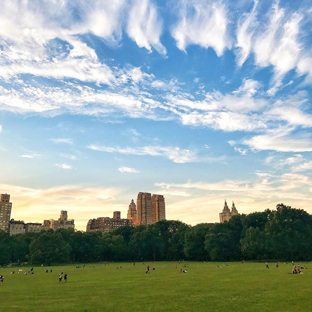 #centralpark is the perfect spot to find some relief from #citylife