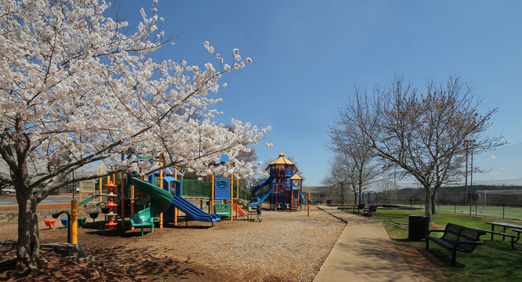 Part of the soon to be renamed Waller Park Extension. It's just one of the amazing parks in Roswell, Ga.