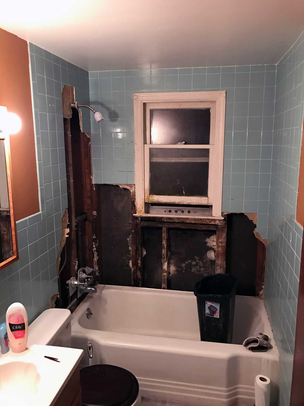 Bathroom Renovation 02