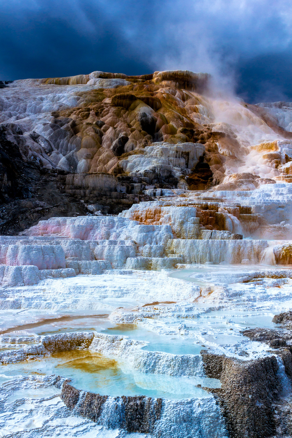 Mammoth-Springs---Yellowstone.jpg
