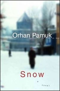 snow book cover.jpeg