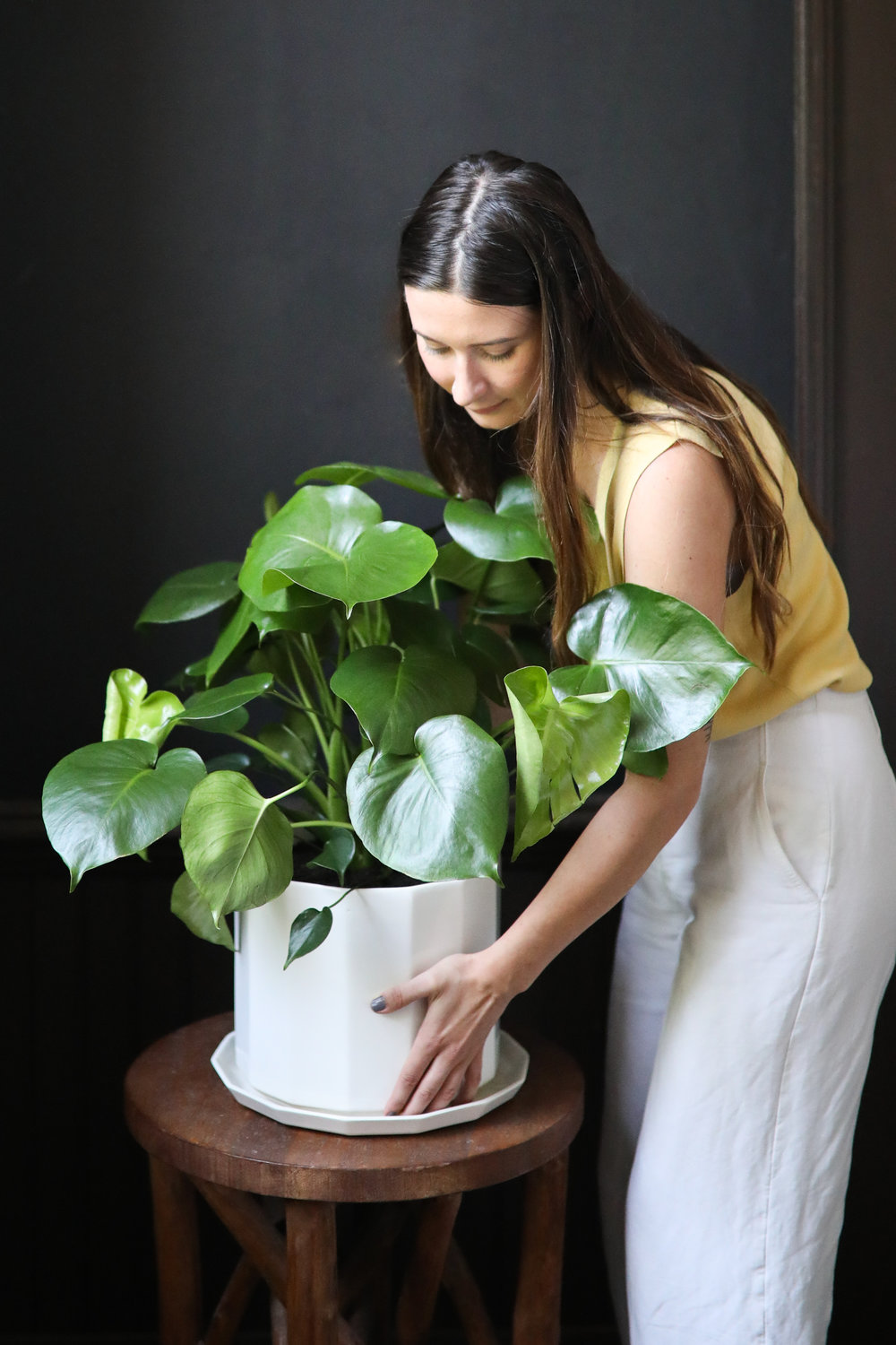 """Pictured:  10"""" Riveted Planter  + Monstera"""
