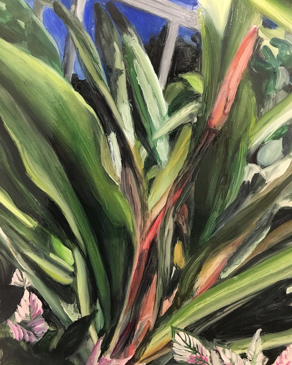 "Plants in Captivity No. 9 | Oil on Duralar | 11 x 14"" L"