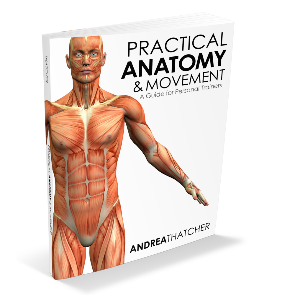 Practical Anatomy And Movement Book Andrea Thatcher