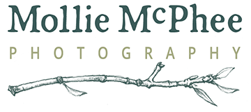 Mollie McPhee | Small-Business Photography