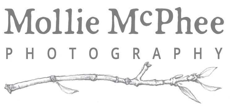 Mollie McPhee | Business and Brand Photography