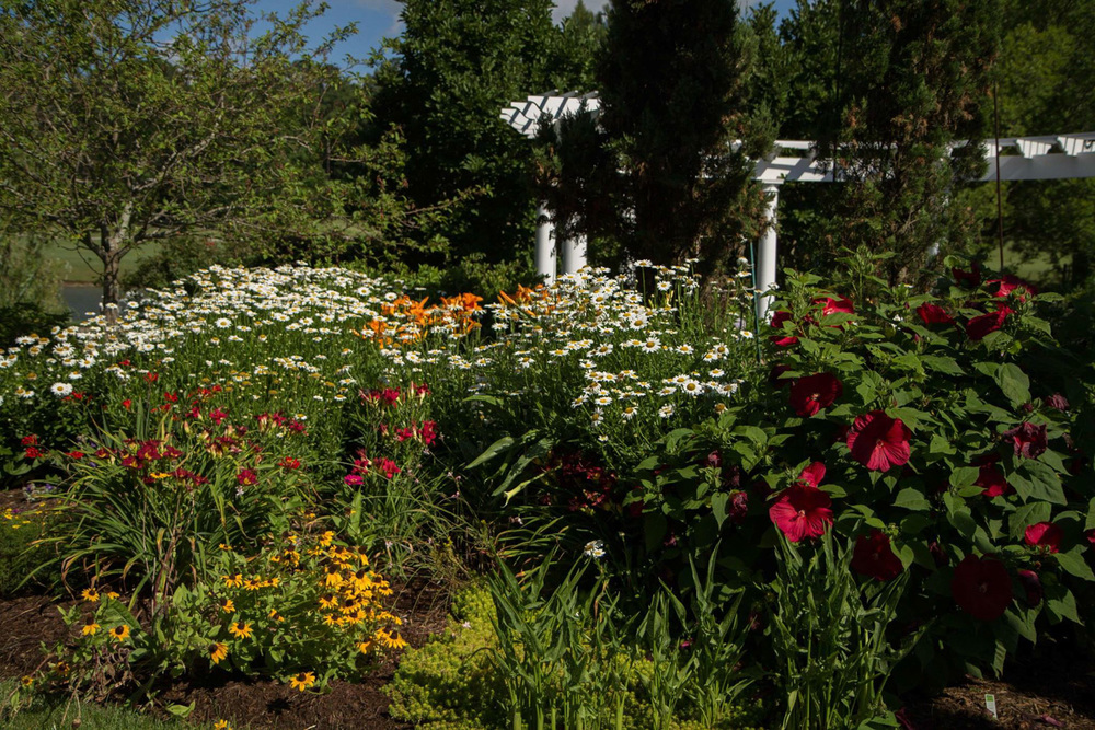 Garden-17.jpg