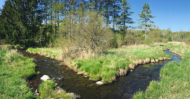 """Where the Milwaukee River is just a baby. Spent a gorgeous morning in May searching for """"wild water"""" with @sarastathas - story in July issue of @milwaukeemag"""