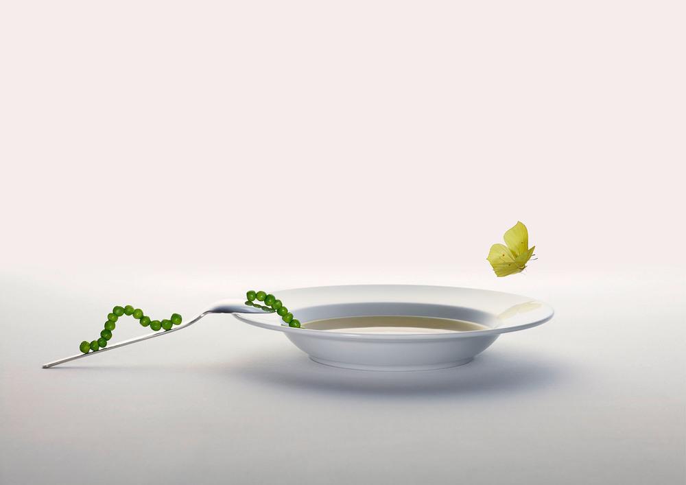 Soup_Butterfly.jpg