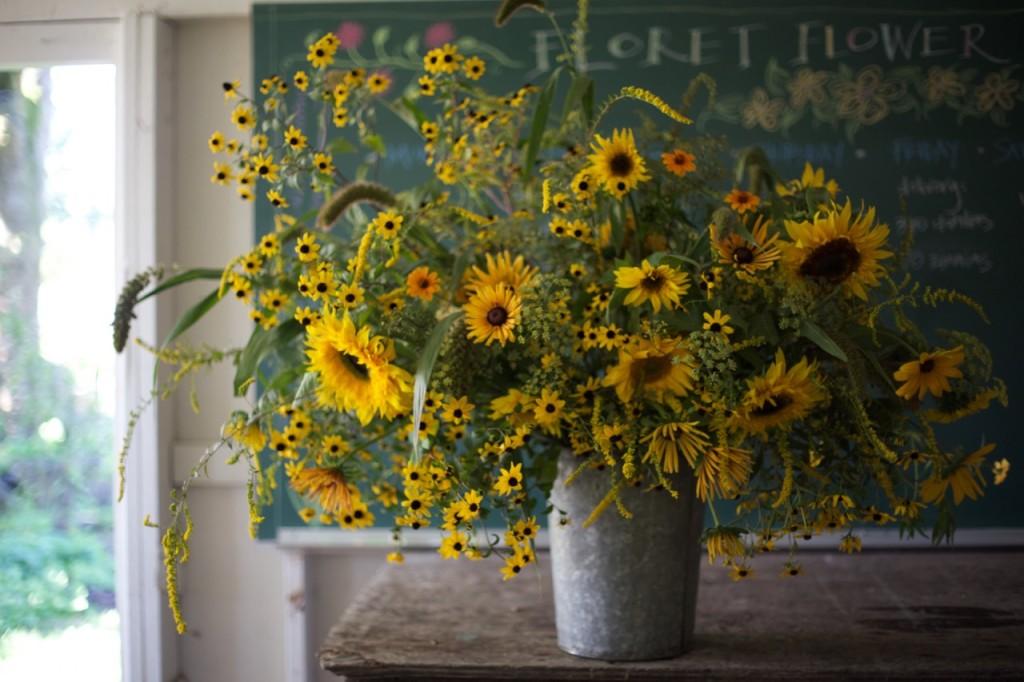 Sunflowers by Floret Farm