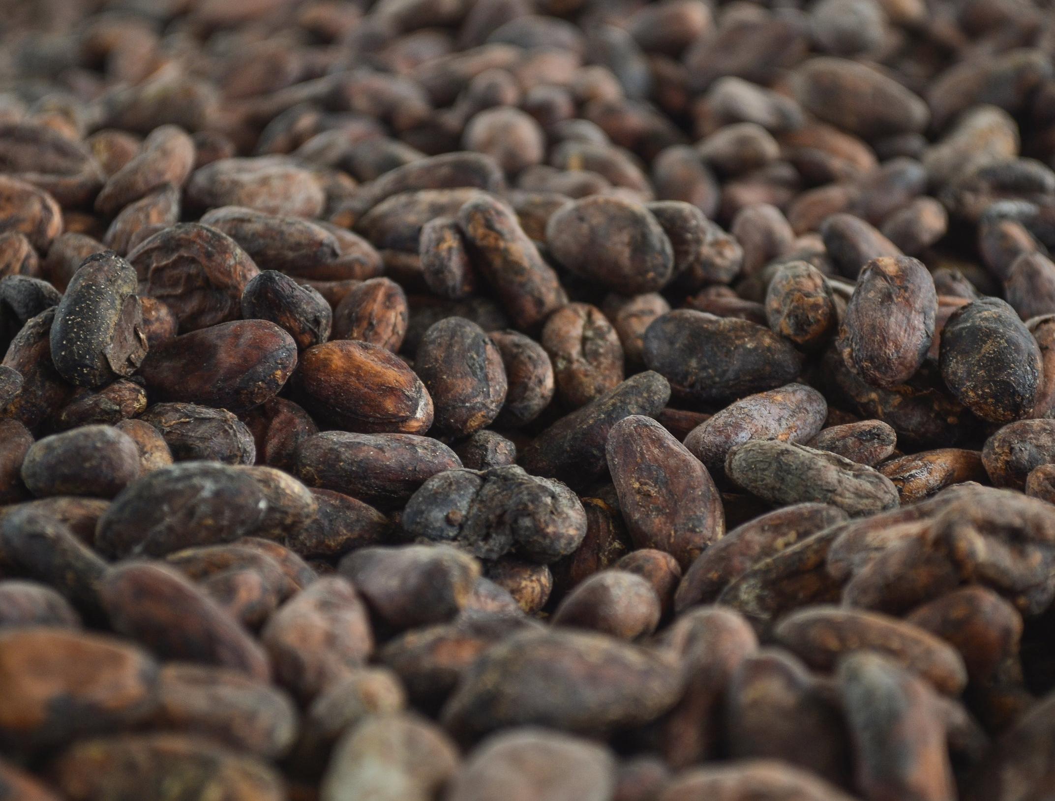 Tuanis® Chocolate