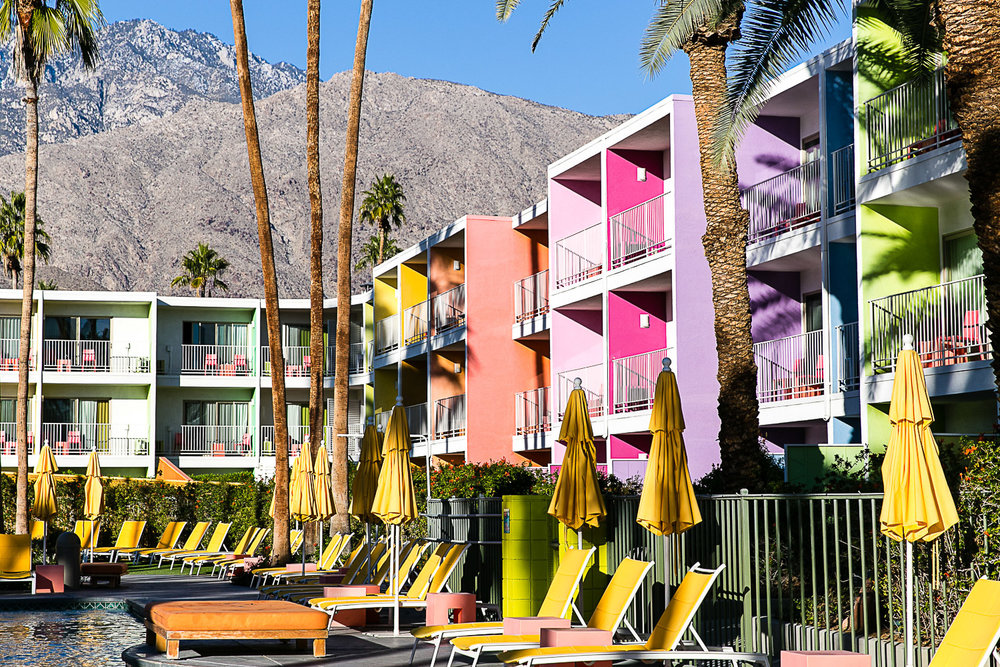 The Saguaro Palm Springs, California © Kat Molesworth (1).jpg