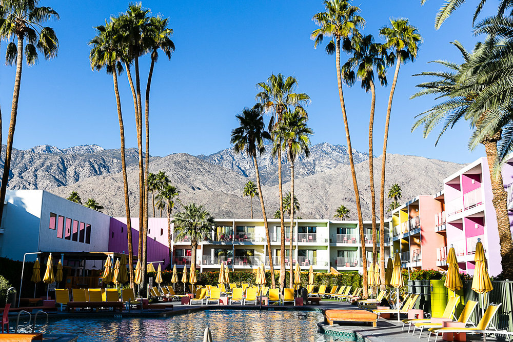 The Saguaro Palm Springs, California © Kat Molesworth (2).jpg