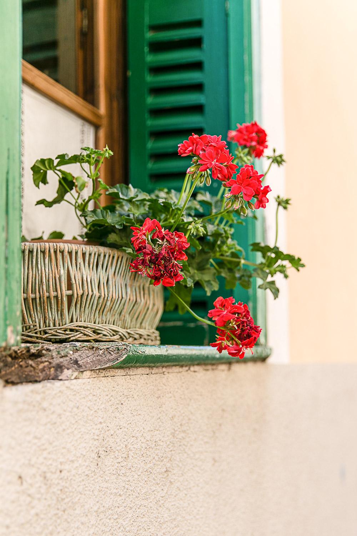 Soller, Mallorca © Kat Molesworth.jpg