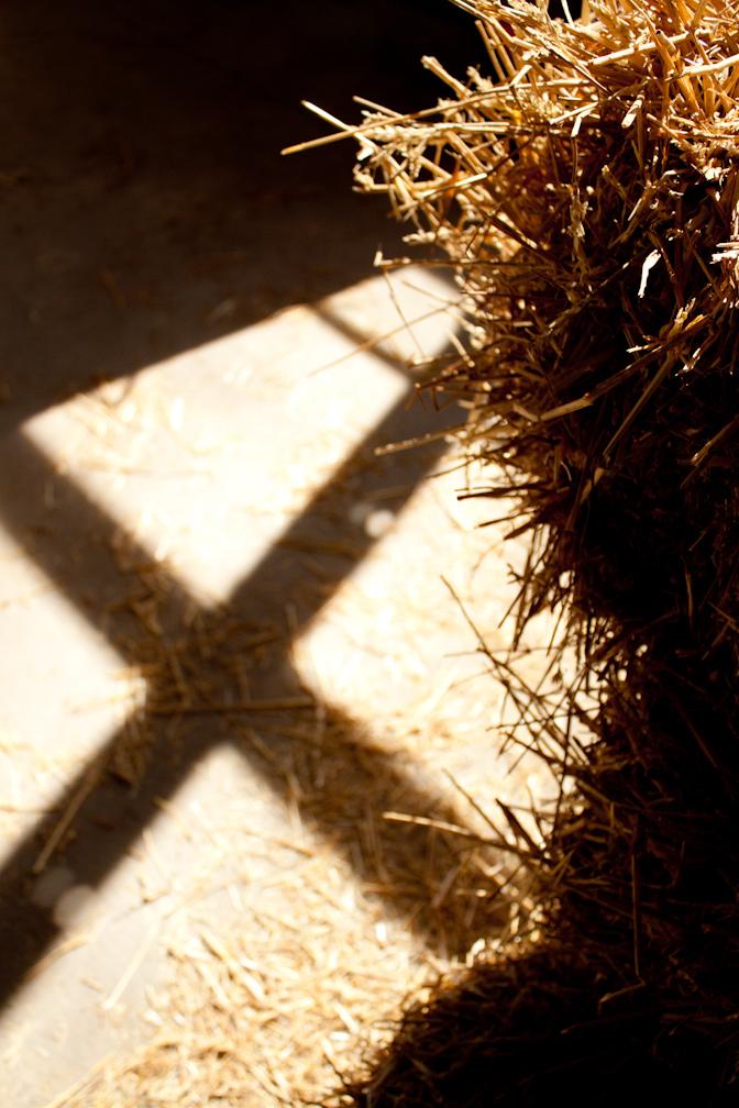 Cross_5495227837_l.jpg
