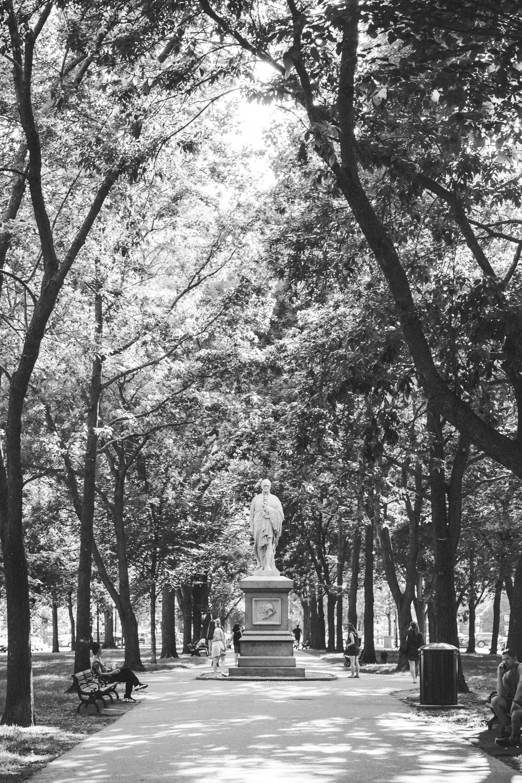 Boston MA - DiBlasio Photography-14.jpg