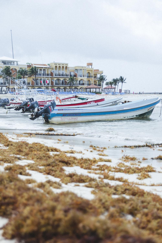 Cancun Travel Photography - DiBlasio Photography-9.jpg