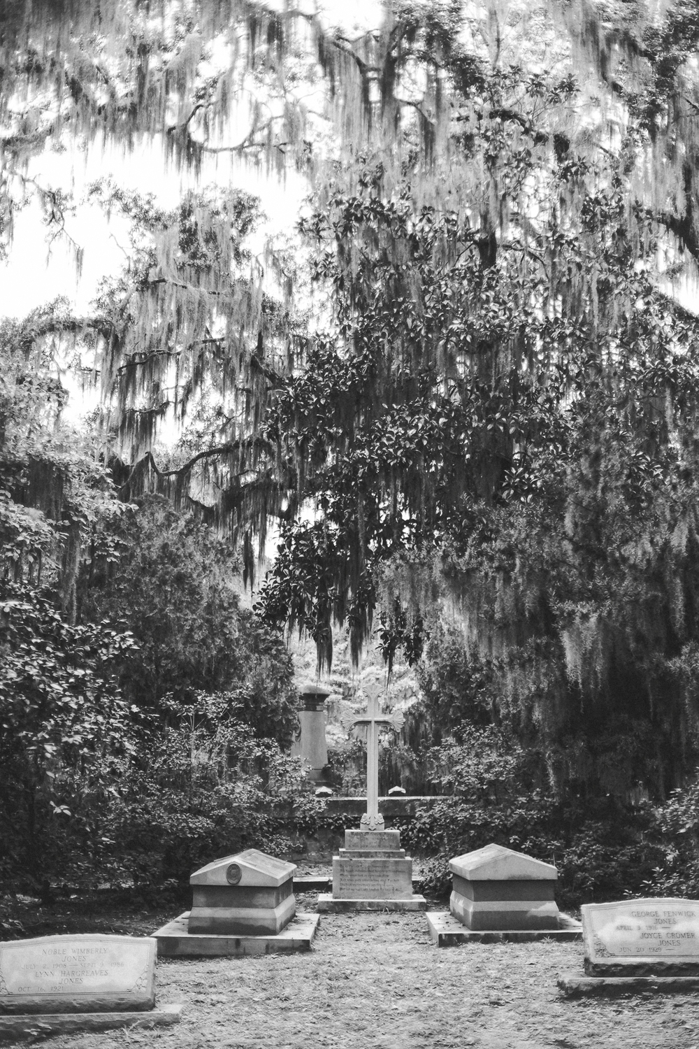 Savannah Georgia - Wormsloe - DiBlasio Photo-2217.jpg