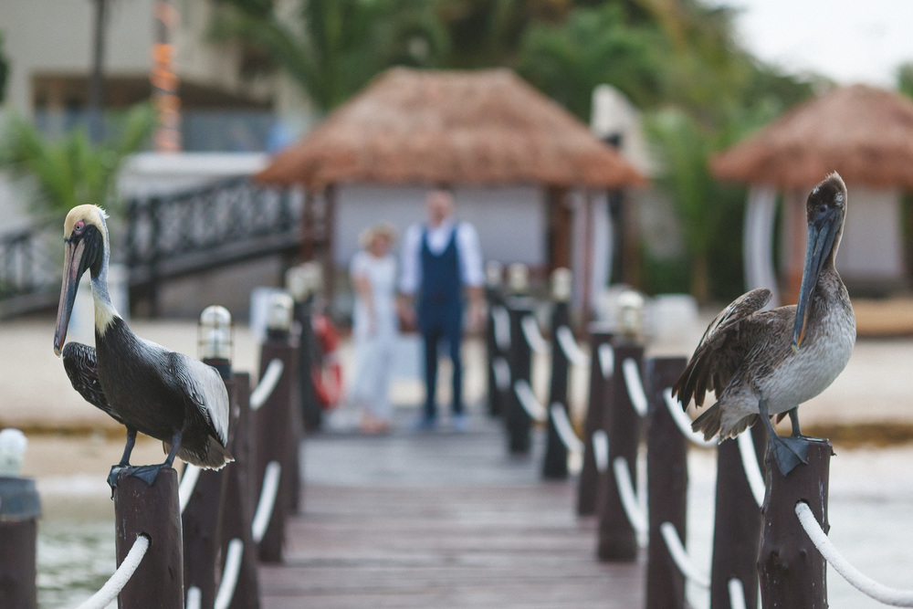 DiBlasio Photo-Mark + Cass Mexico Wedding-383.jpg