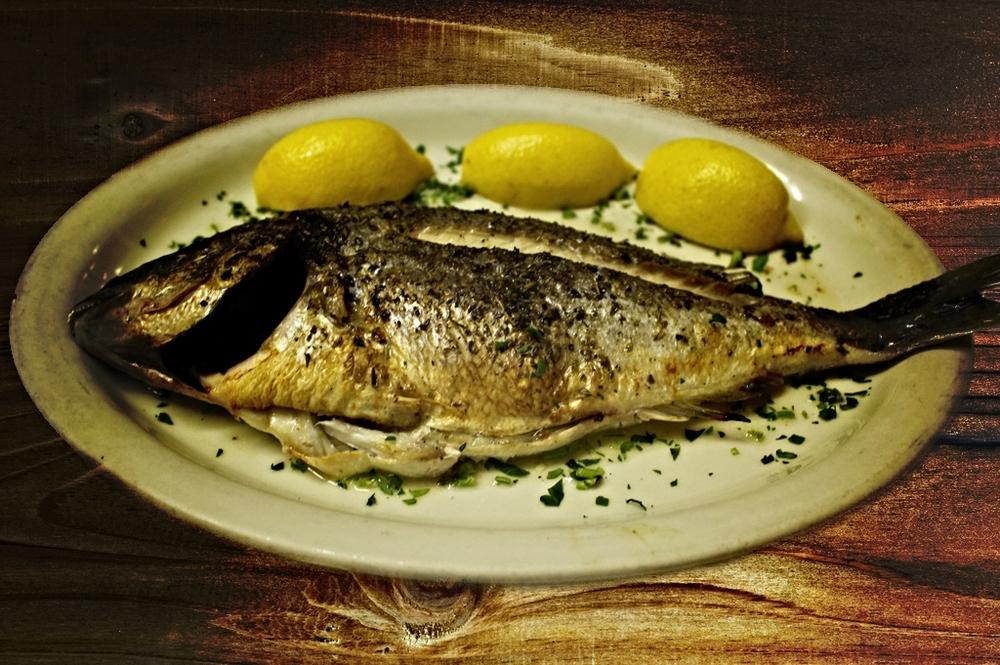 fishy.jpg