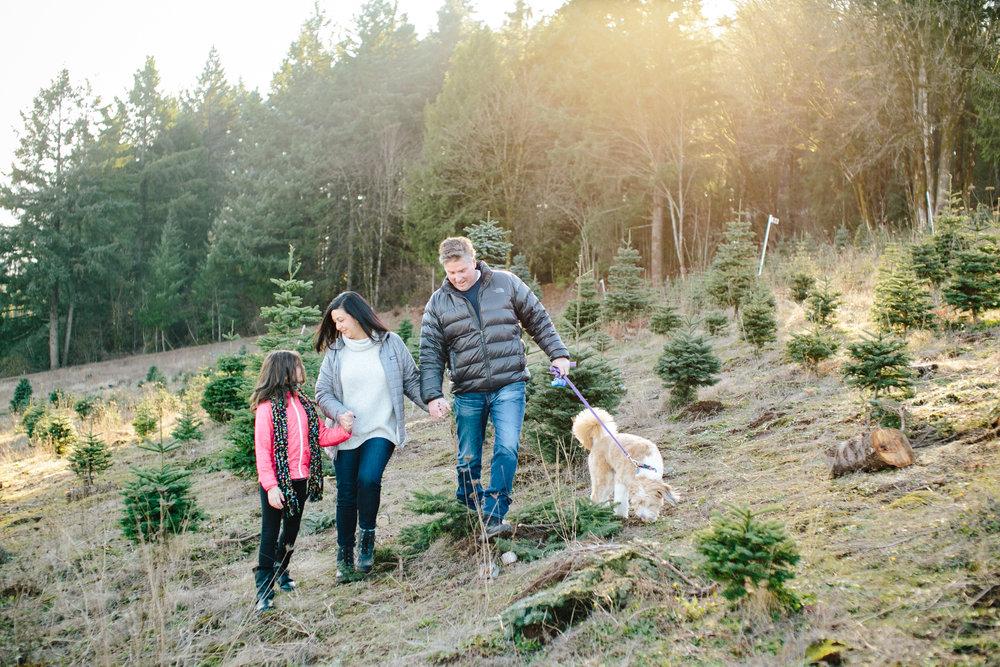 sleighbells-of-sherwood-family-photos-1.jpg