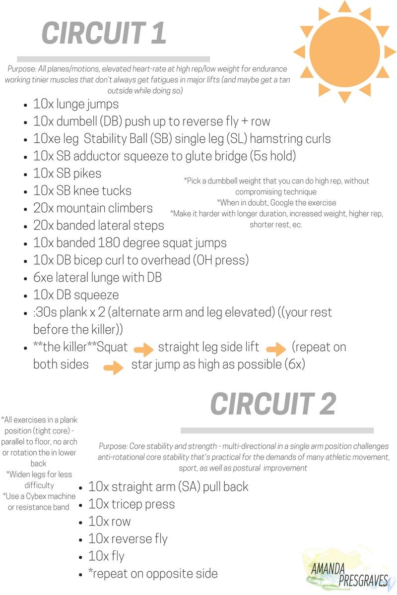 Blog- Circuits.jpg
