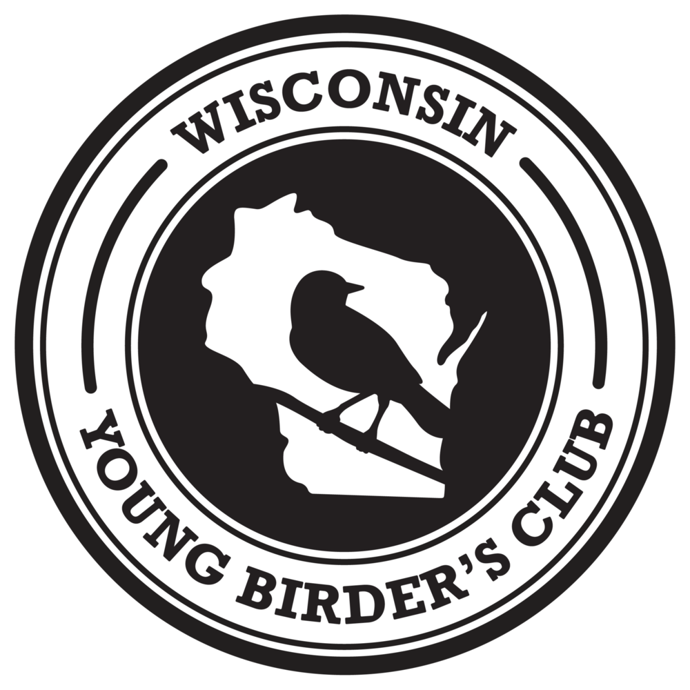 WYBC_Logo_HighRes-01.png