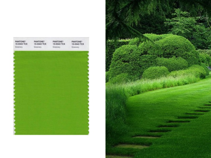 Left: Pantone 2017 COY - Greenery / Right: image via Pinterest