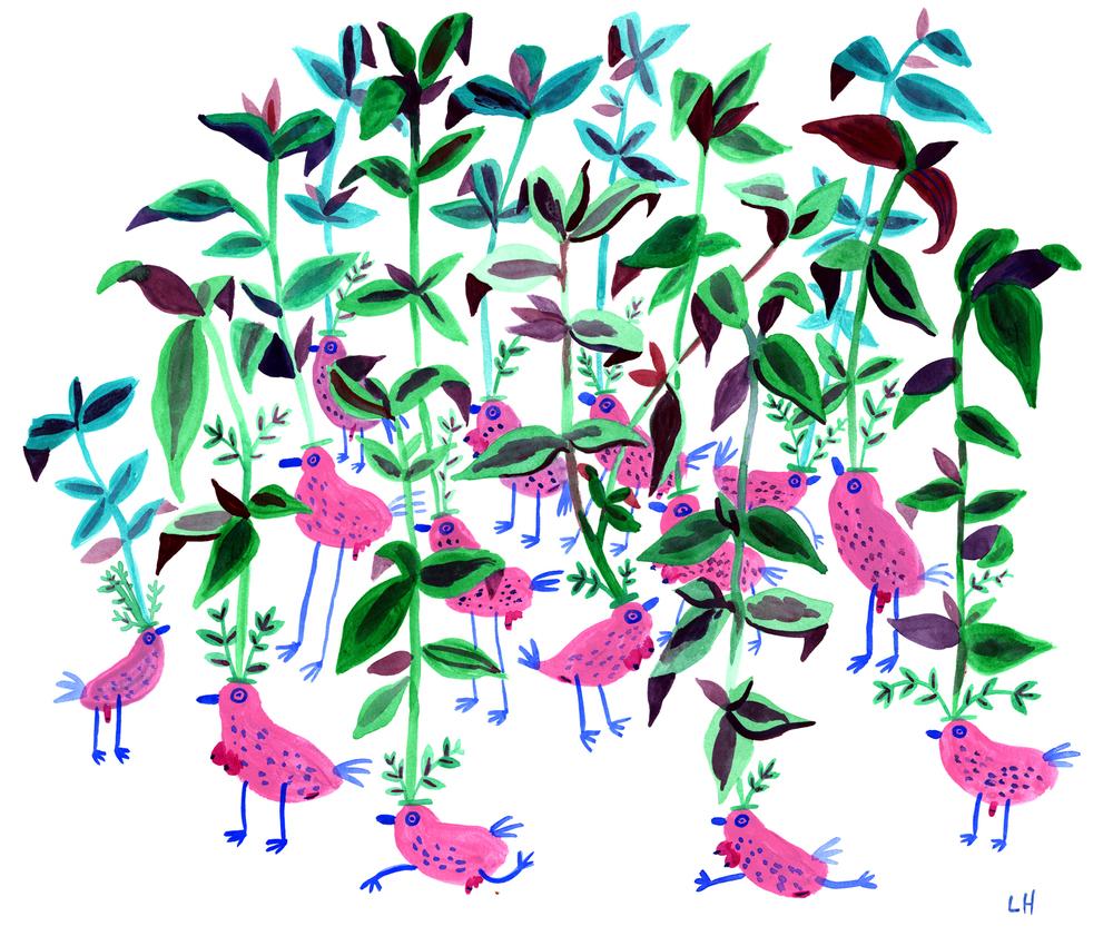 Dicktit Birds