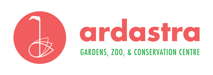 logo color ardastra regular.png
