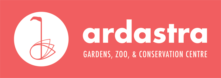 logo color ardastra reverse.png