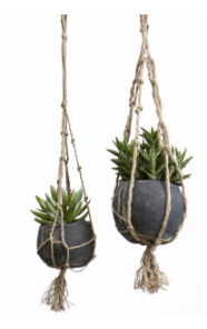 Canta hanging flower pot