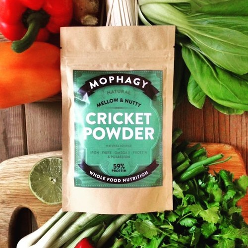 Mophagy Cricket Powder