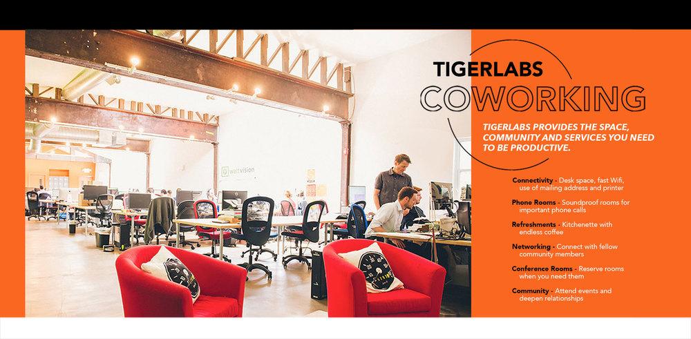 Tigerlabs.coworking12500w.jpg