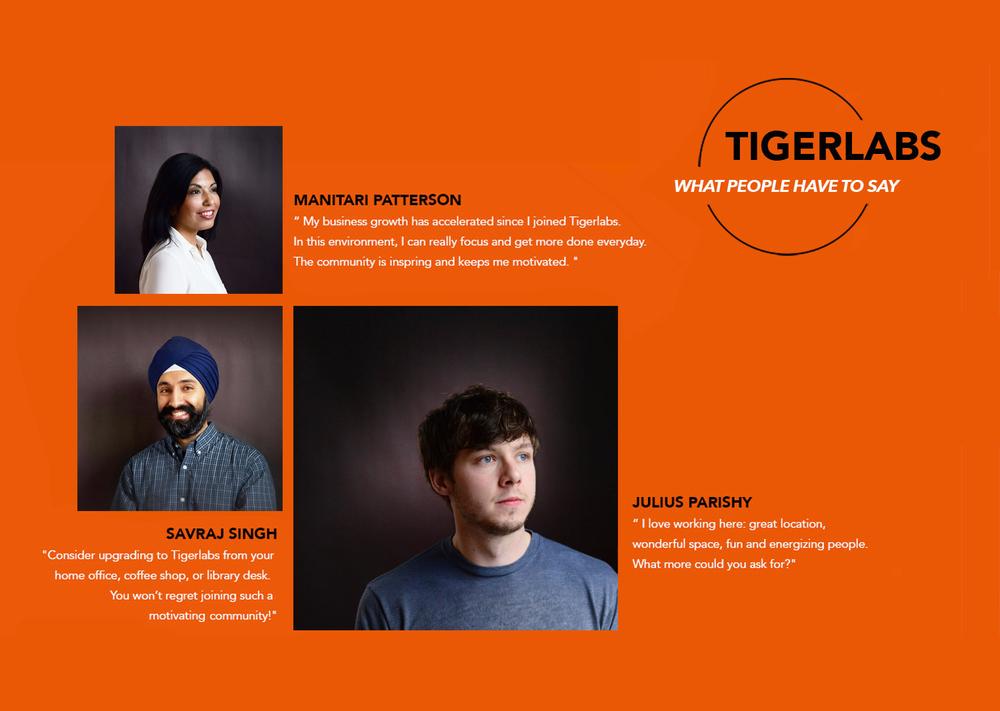 Tigerlabs.testimonials II.jpg