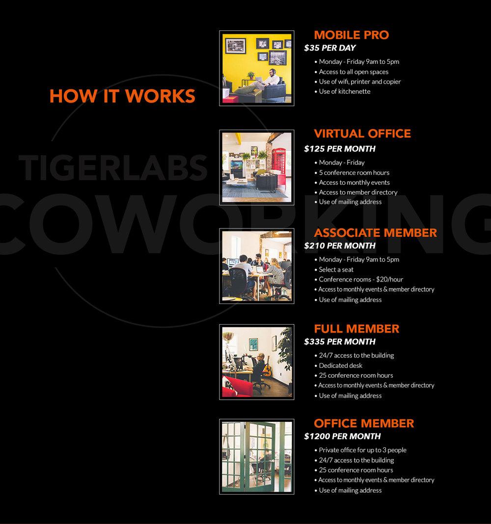 type+of+coworking.jpg