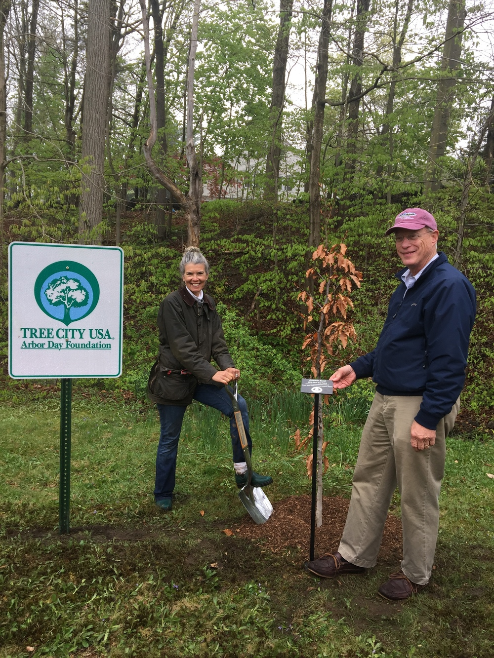 2016 Arbor Day Award winners Dena Steele and Houston Stebbins planting an American Beech tree at the entrance to Tuxedo Park.