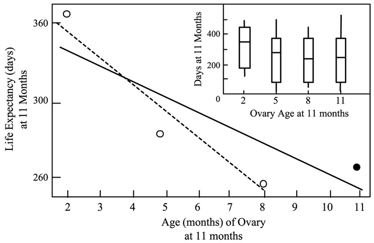 Ovary Age Predicts Life Expectancy in Mice (from  Cargill et al, 2003 ; Aging Cell)