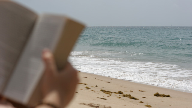 beachreading.jpg