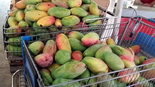 store bought mango.jpg