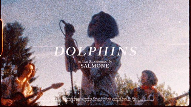 The Super 8 video DOLPHINS 🐬 by @salmoneband is out !! You can find it on our website (link in bio) Directed by @leoschrepel ! And the video is co-produced with @khatomproductions  #salmone #salmoneband #linlassable #leoschrepel #khatomproductions #linlassablemusic #super8 #dolphins
