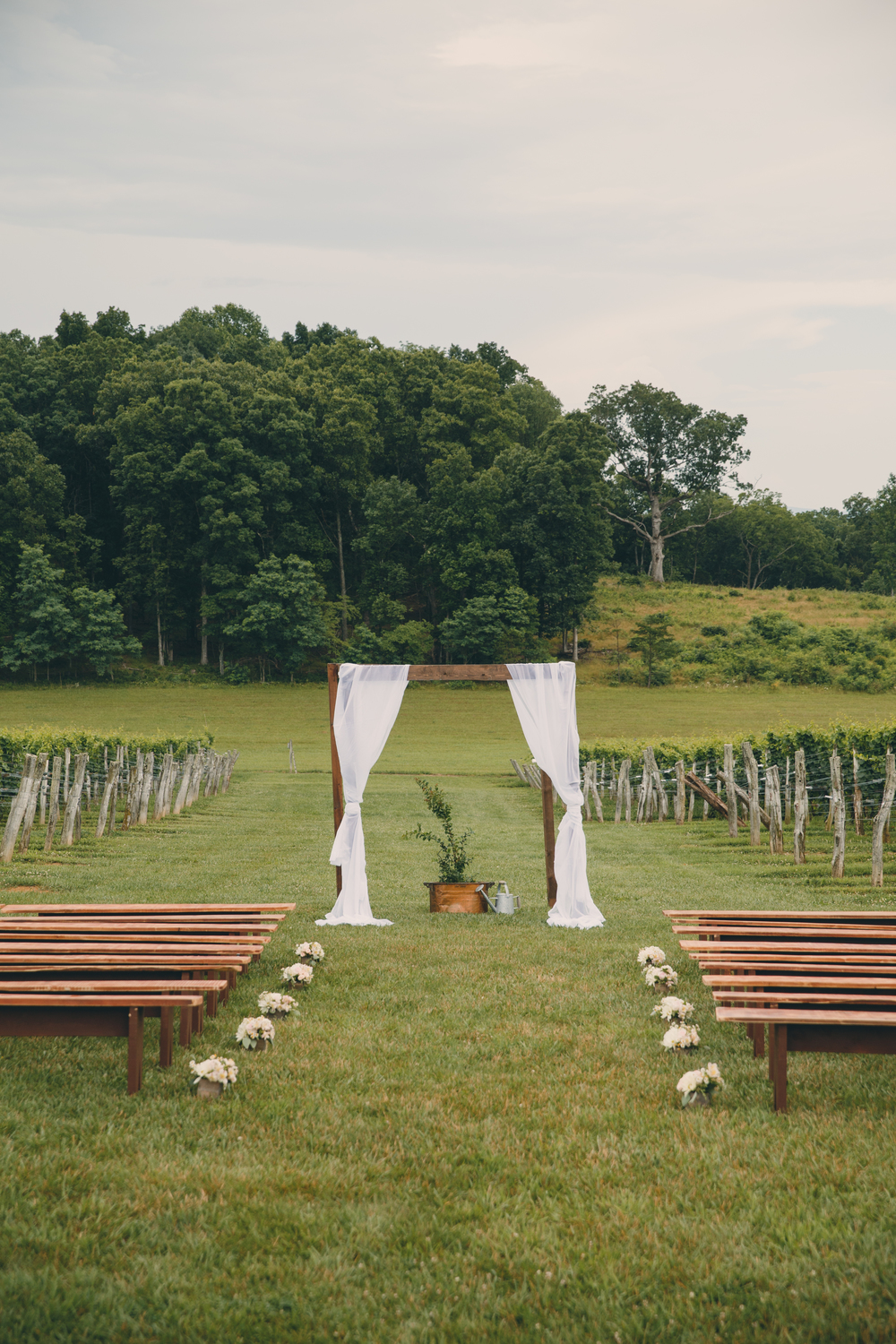 vamountainvineyards-weddings-weddingphotographer-virginia-patcoriphotography(264of800).jpg